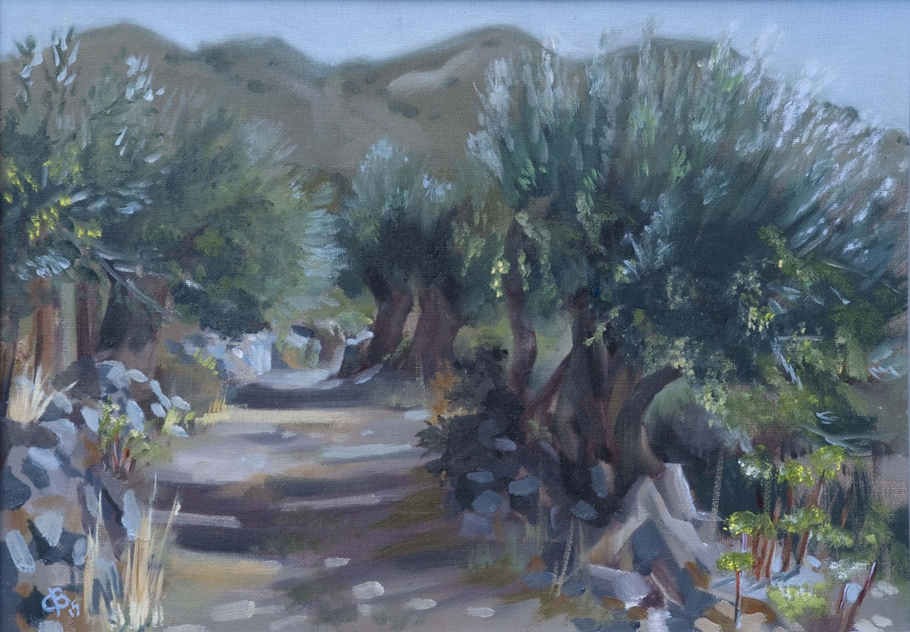 <p><em><strong>Olives near Kourounes, Crete </strong></em>Oils on Canvas board 35x25cms SOLD</p>